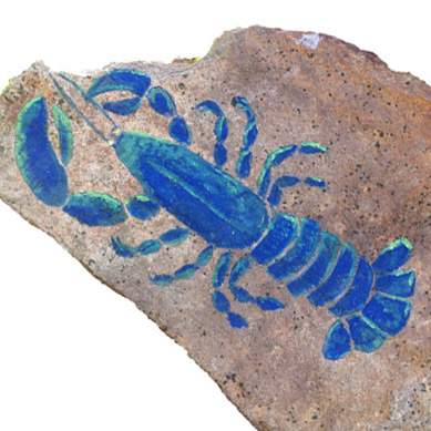 Edwards-Blue-Lobster-rock-Logo-389SQ