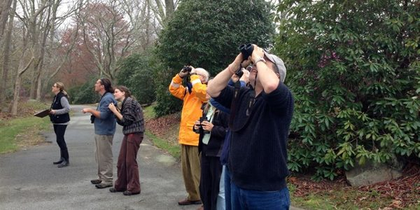 FI Conservancy Spring Migration Bird Count
