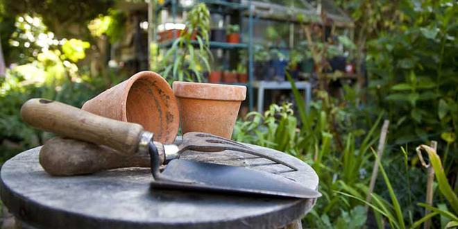home-gardening-Jan-14-660x330