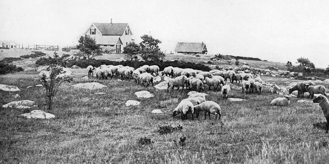 HLF Museum Lecture: History of Farming on Fishers Island