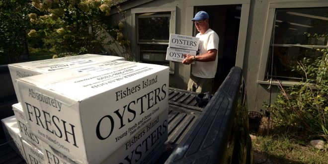 Fishers Island Oyster Farm raises oysters without impacting the environment