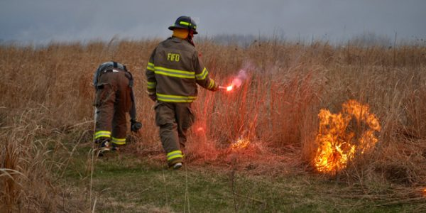 Fishers Island Conservancy's Annual Burn