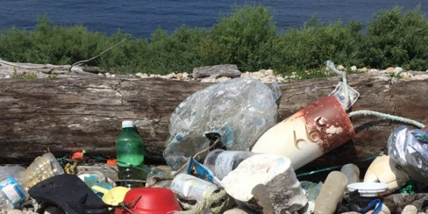 Island-wide Beach Clean Up Day: Help us Turn the Tide on Trash