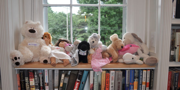 Fishers Island Library's Stuffed Animal Sleepover