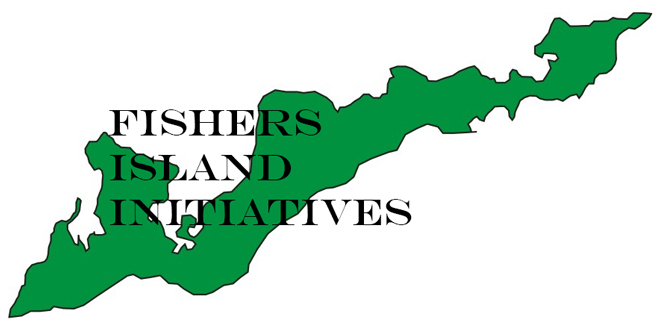 Island Initiatives Document