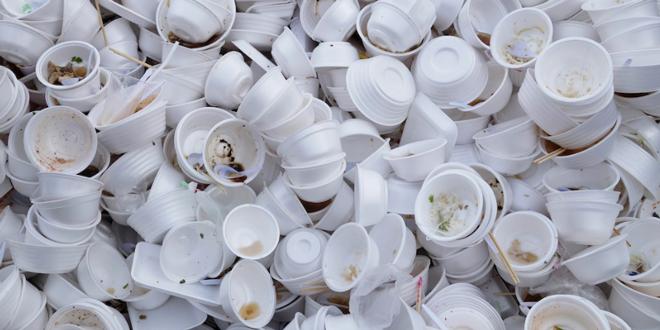 Suffolk Lawmakers Approve Styrofoam Ban