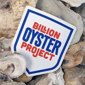 Ready for your own Oyster Research Station?