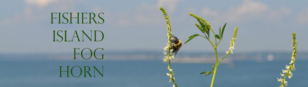 Bee-Weeds-JTAhrens-22JUL14_0043-MASTHEAD-SEP19-1000X282