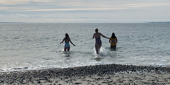A Polar Plunge for a New Year